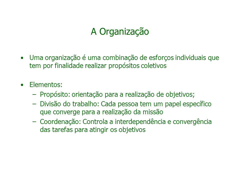 A Organização Uma organização é uma combinação de esforços individuais que tem por finalidade realizar propósitos coletivos.