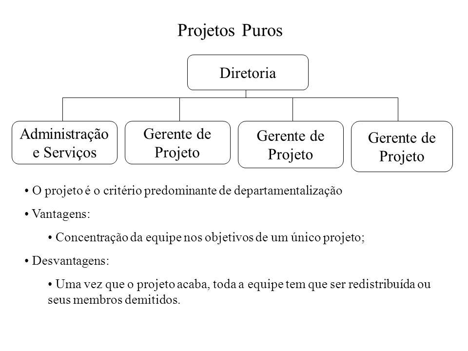 Projetos Puros Diretoria Administração e Serviços Gerente de Projeto