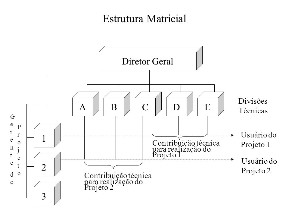 Estrutura Matricial Diretor Geral A B C D E 1 2 3 Divisões Técnicas