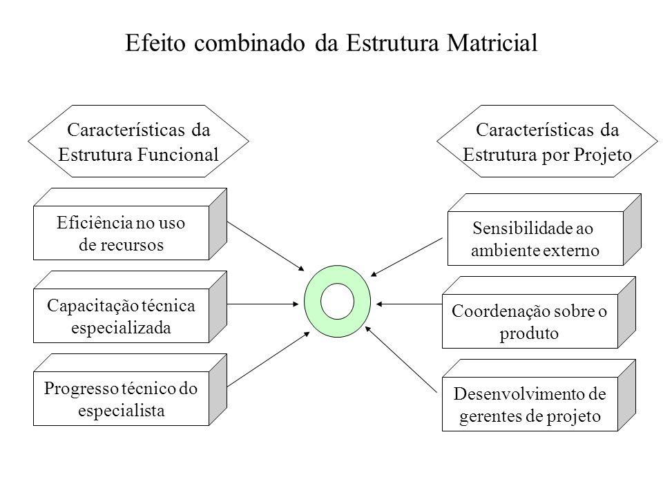 Efeito combinado da Estrutura Matricial