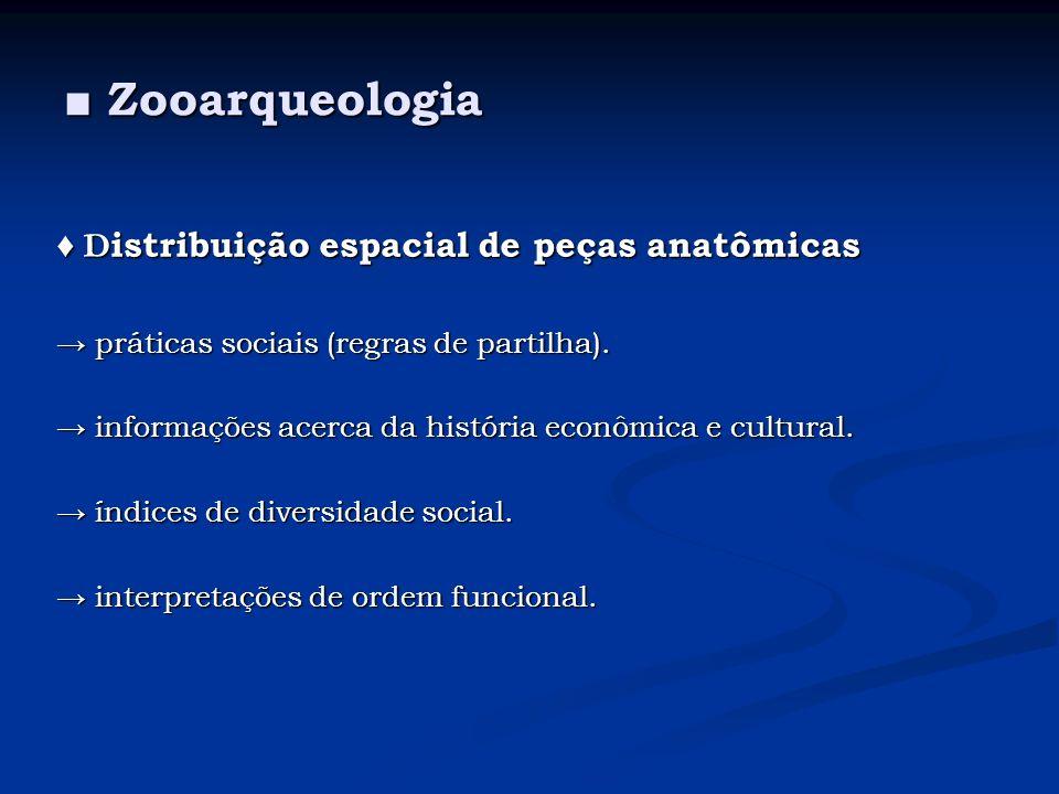 ■ Zooarqueologia ♦ Distribuição espacial de peças anatômicas