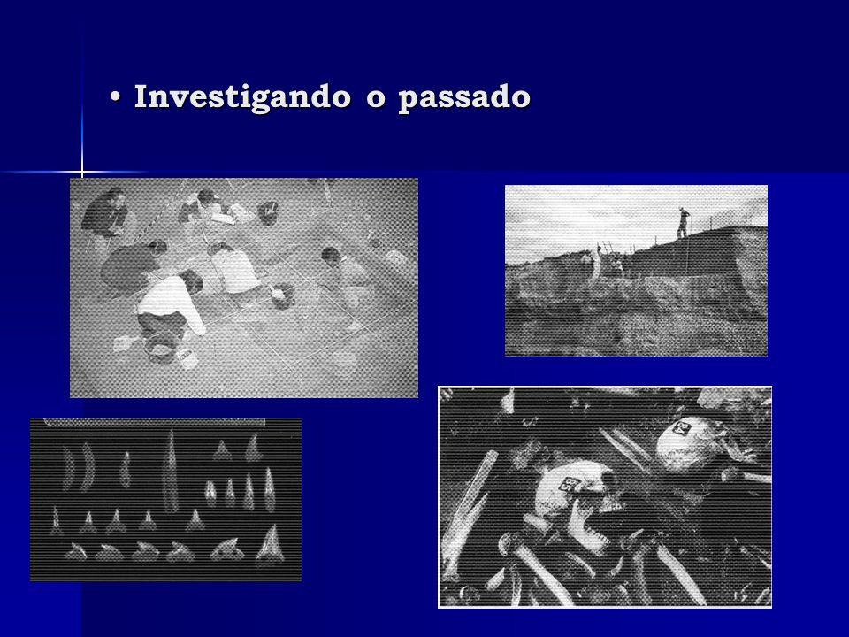 Investigando o passado
