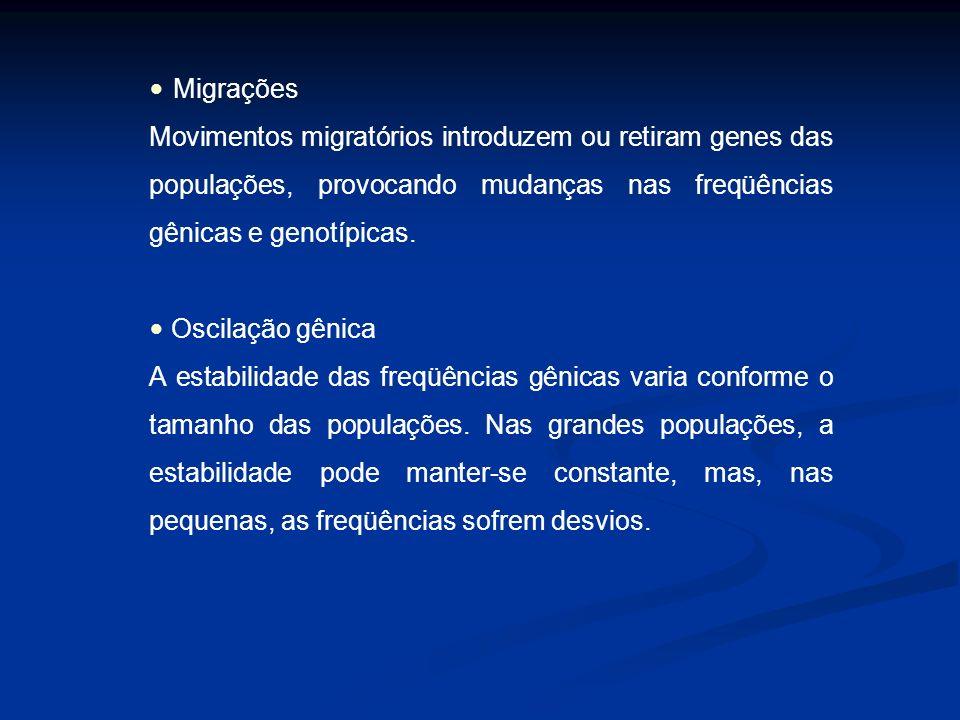 Migrações Movimentos migratórios introduzem ou retiram genes das populações, provocando mudanças nas freqüências gênicas e genotípicas.