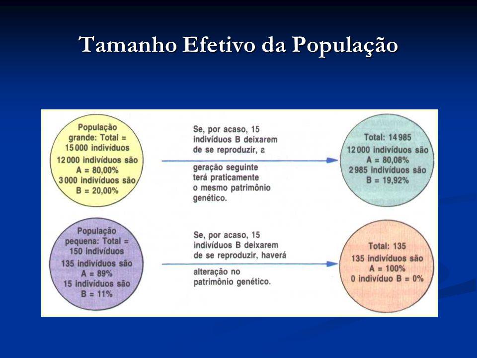 Tamanho Efetivo da População