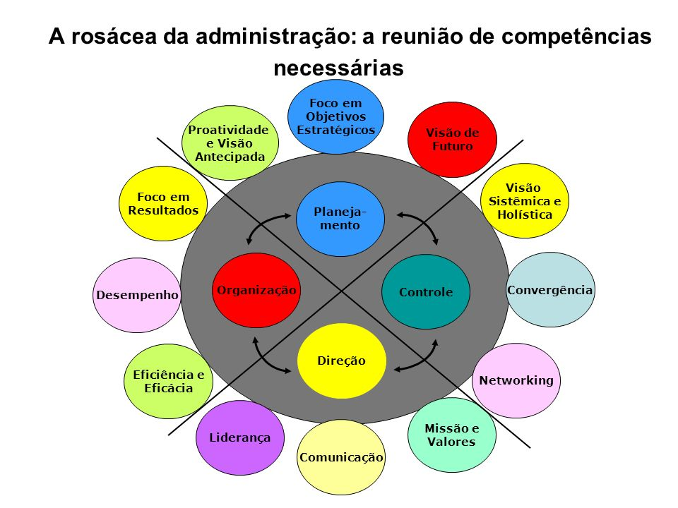 A rosácea da administração: a reunião de competências necessárias
