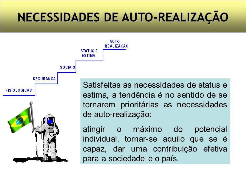 NECESSIDADES DE AUTO-REALIZAÇÃO