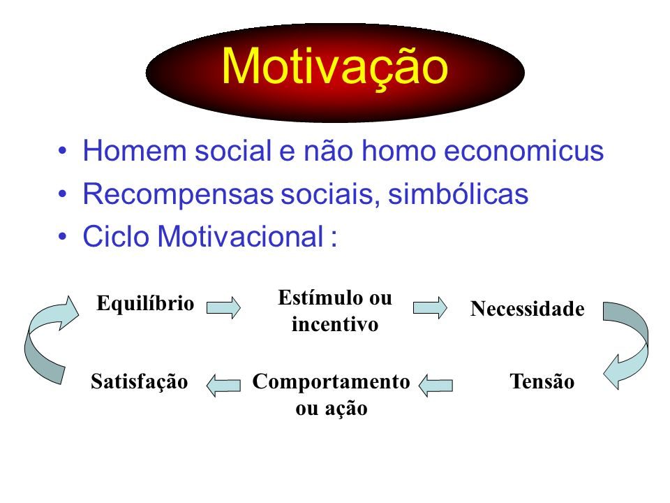 Motivação Homem social e não homo economicus