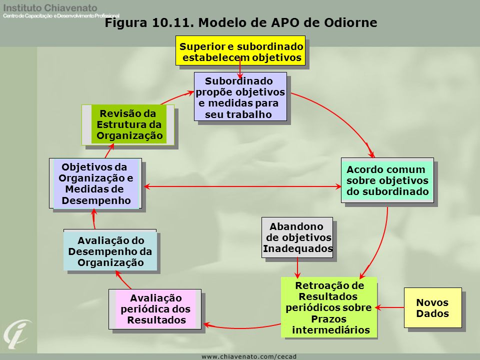 Figura 10.11. Modelo de APO de Odiorne