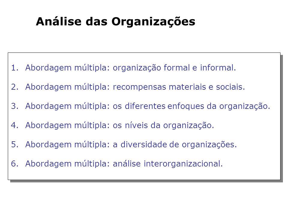 Análise das Organizações