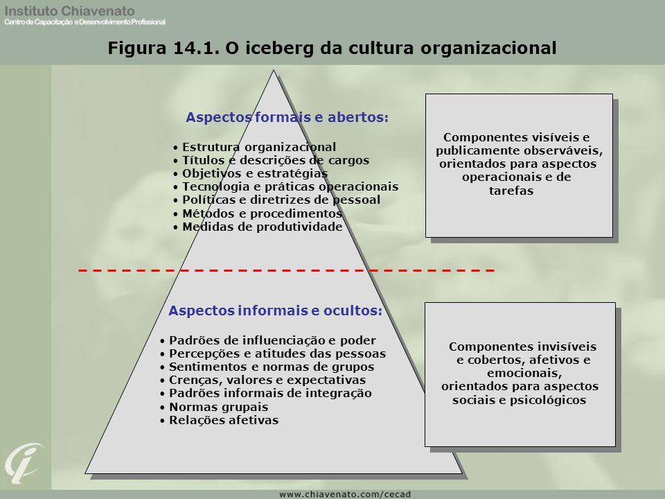 Figura 14.1. O iceberg da cultura organizacional