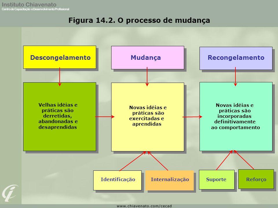 Figura 14.2. O processo de mudança