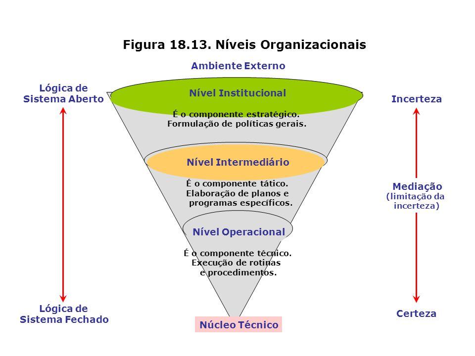 Figura 18.13. Níveis Organizacionais