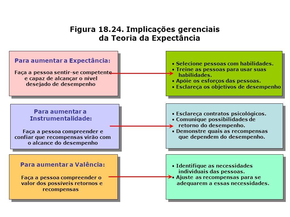 Figura 18.24. Implicações gerenciais da Teoria da Expectância