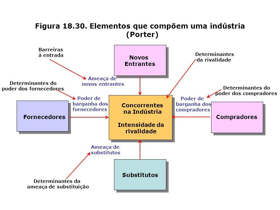 Figura 18.30. Elementos que compõem uma indústria (Porter)
