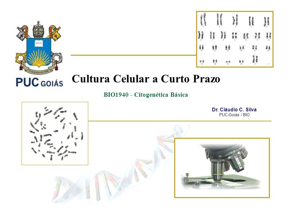 Cultura Celular a Curto Prazo BIO1940 - Citogenética Básica