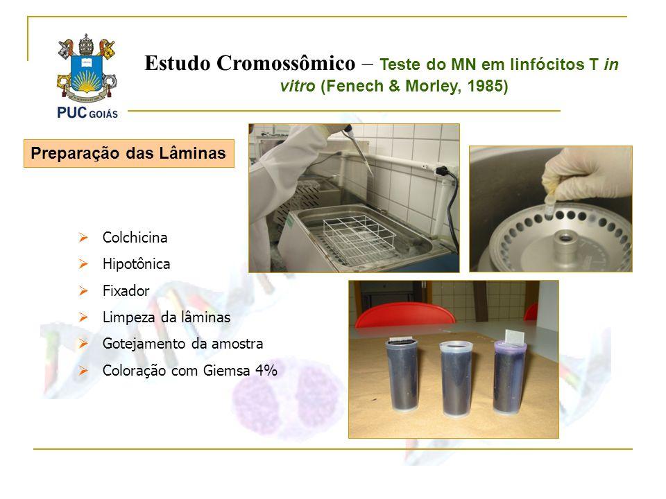 Estudo Cromossômico – Teste do MN em linfócitos T in vitro (Fenech & Morley, 1985)