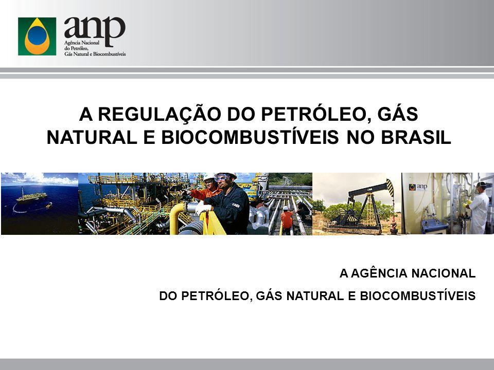 A REGULAÇÃO DO PETRÓLEO, GÁS NATURAL E BIOCOMBUSTÍVEIS NO BRASIL