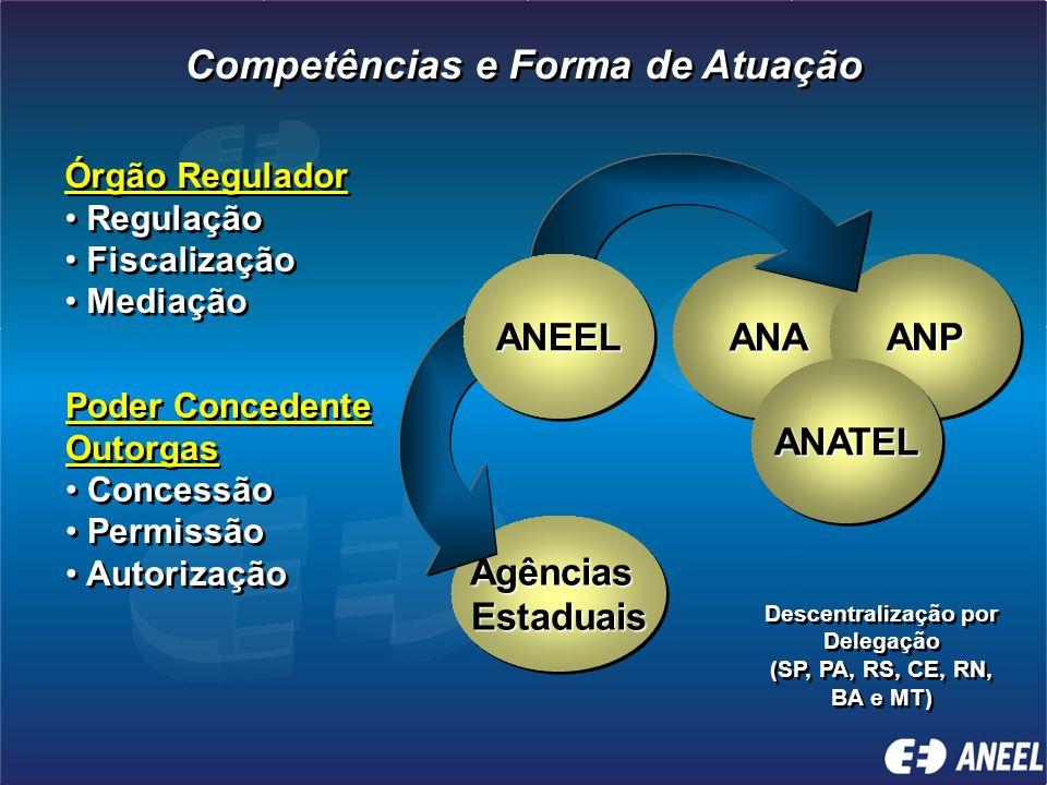 Competências e Forma de Atuação Descentralização por Delegação