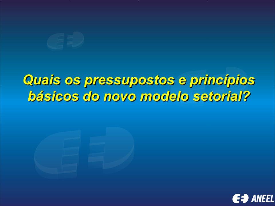 Quais os pressupostos e princípios básicos do novo modelo setorial