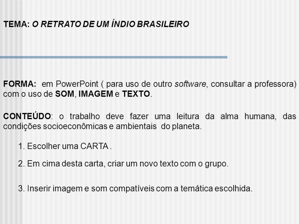 TEMA: O RETRATO DE UM ÍNDIO BRASILEIRO