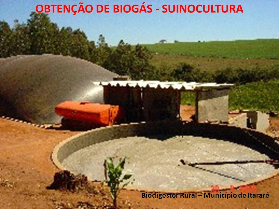 OBTENÇÃO DE BIOGÁS - SUINOCULTURA