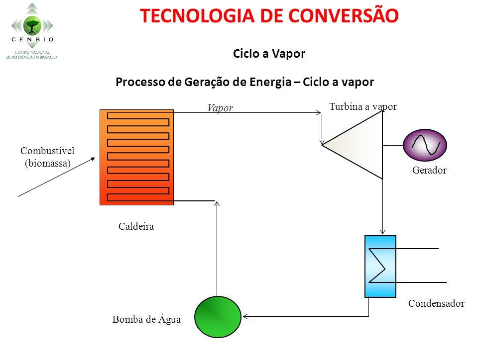 TECNOLOGIA DE CONVERSÃO Processo de Geração de Energia – Ciclo a vapor