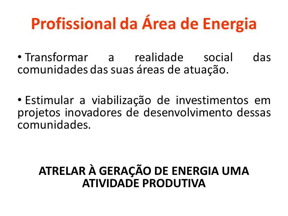 Profissional da Área de Energia