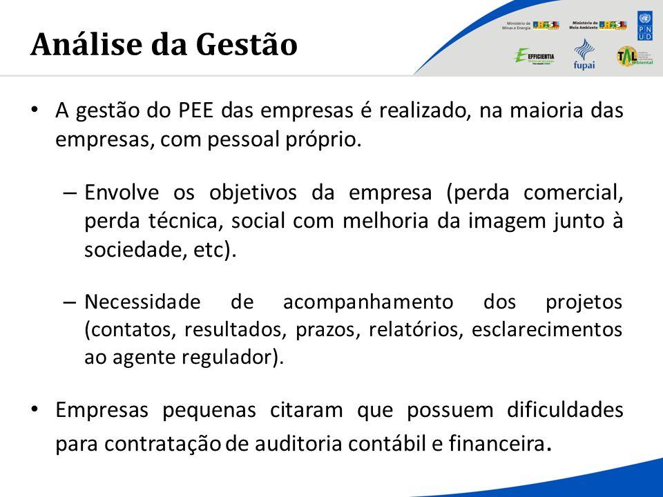 Análise da Gestão A gestão do PEE das empresas é realizado, na maioria das empresas, com pessoal próprio.