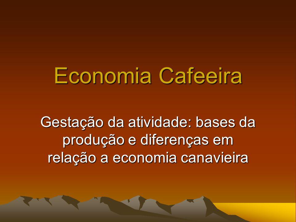 Aula 17 Gestação da economia cafeeira