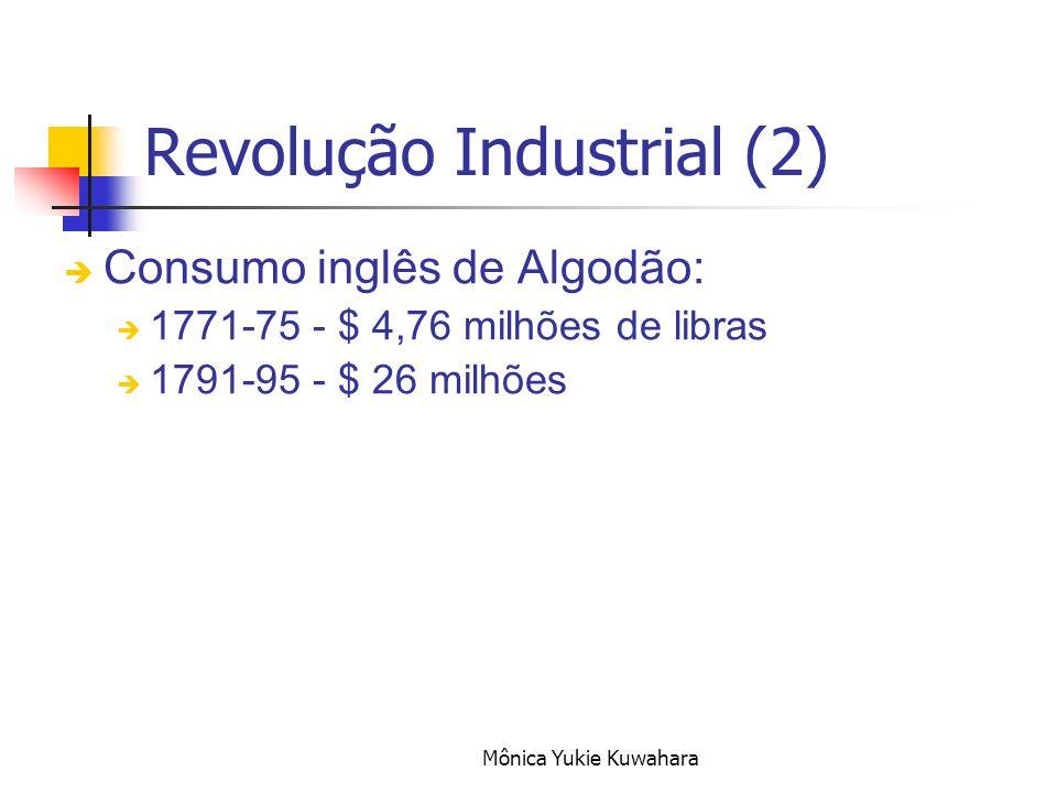 Revolução Industrial (2)