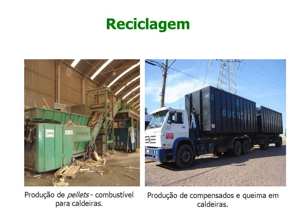 Reciclagem Produção de pellets - combustível para caldeiras.