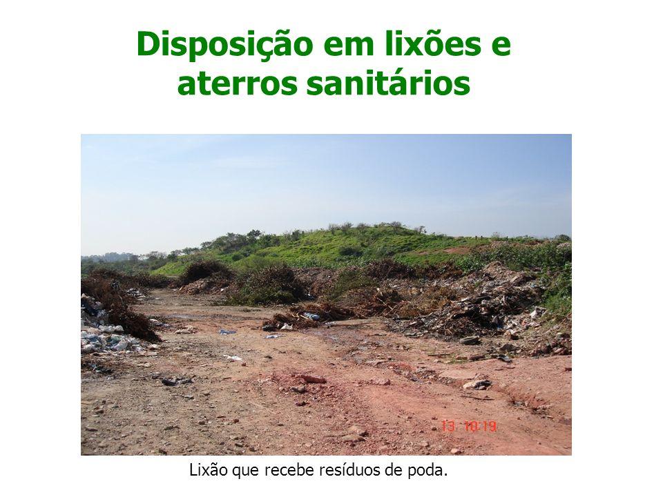 Disposição em lixões e aterros sanitários