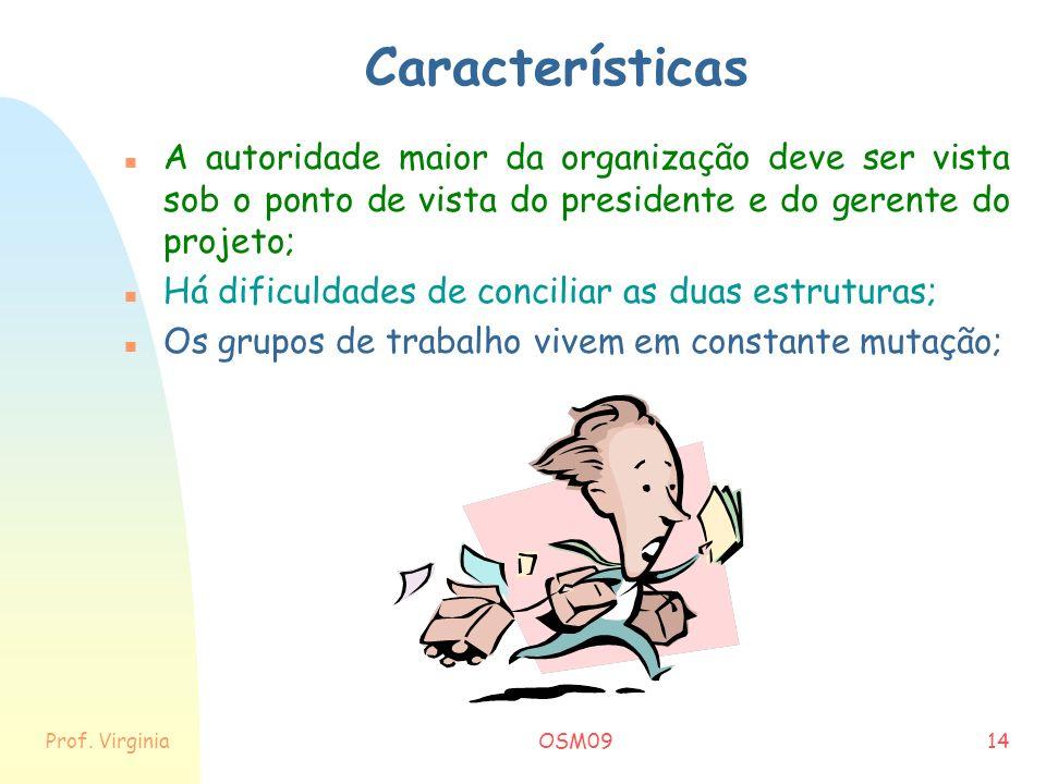 Características A autoridade maior da organização deve ser vista sob o ponto de vista do presidente e do gerente do projeto;