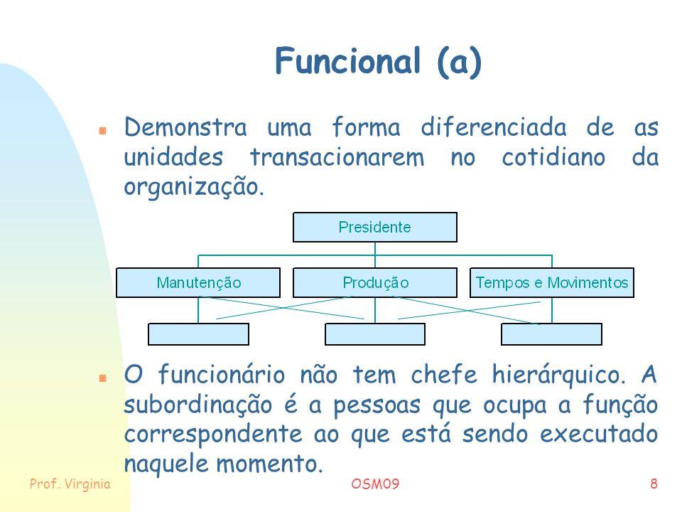 Funcional (a) Demonstra uma forma diferenciada de as unidades transacionarem no cotidiano da organização.