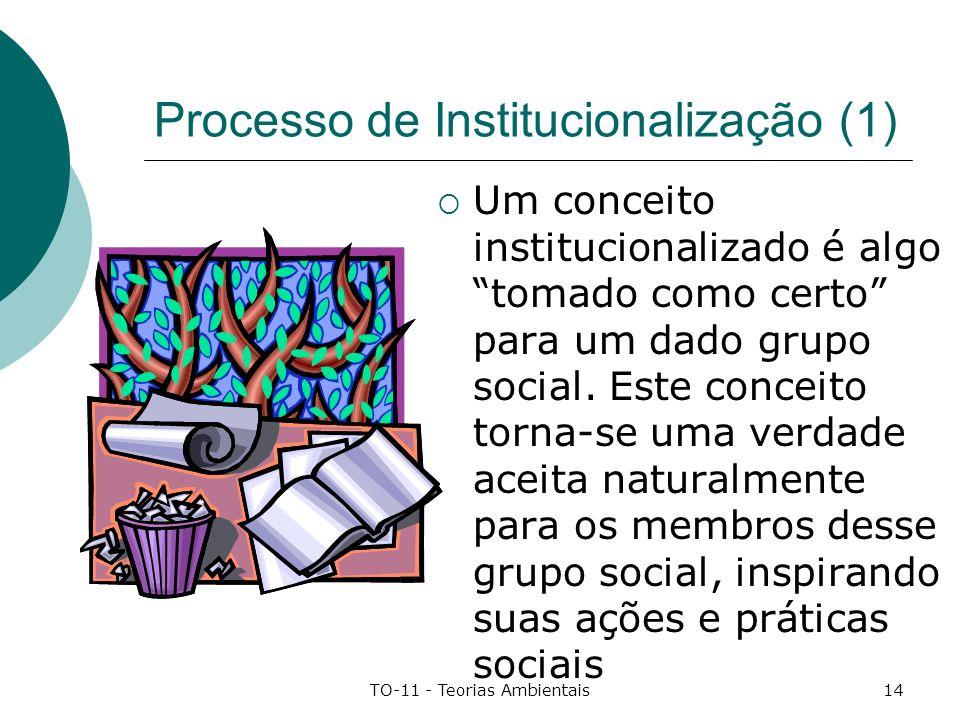 Processo de Institucionalização (1)