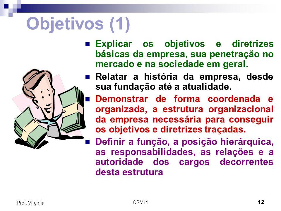 Objetivos (1) Explicar os objetivos e diretrizes básicas da empresa, sua penetração no mercado e na sociedade em geral.