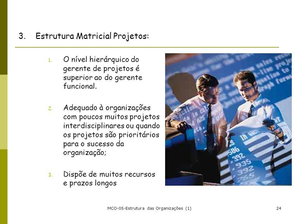 MCO-05-Estrutura das Organizações (1)