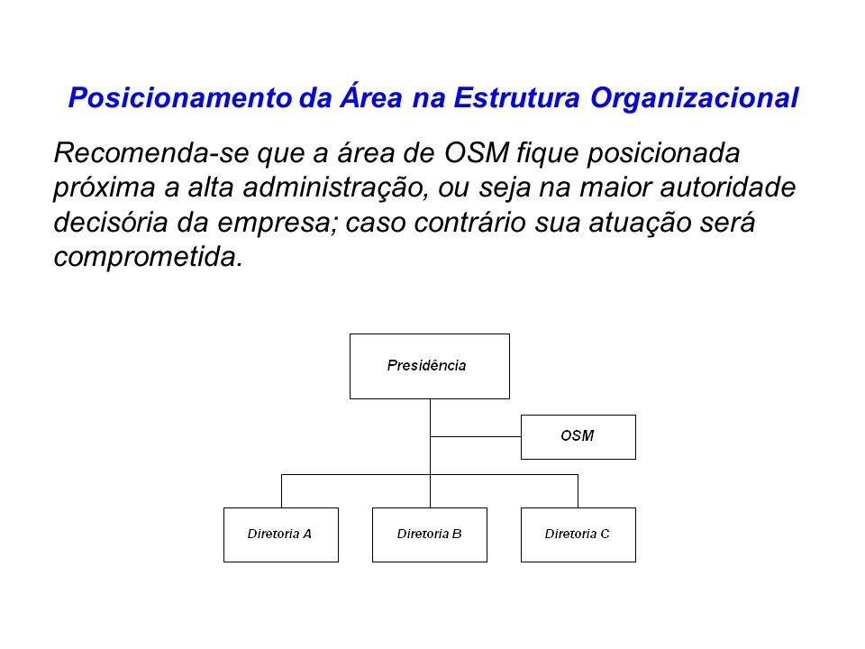 Posicionamento da Área na Estrutura Organizacional