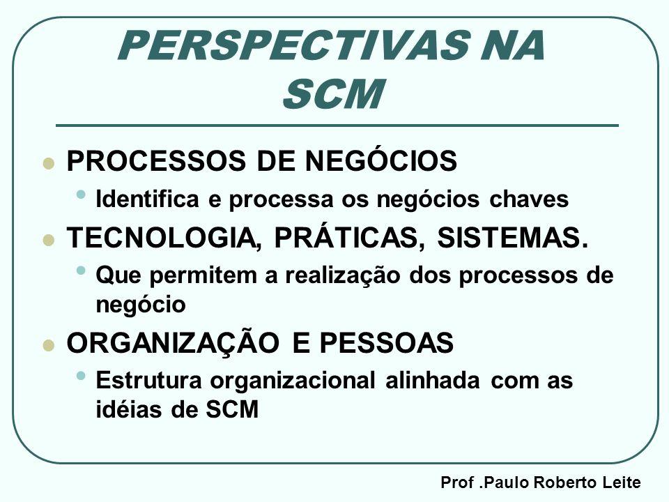Prof .Paulo Roberto Leite