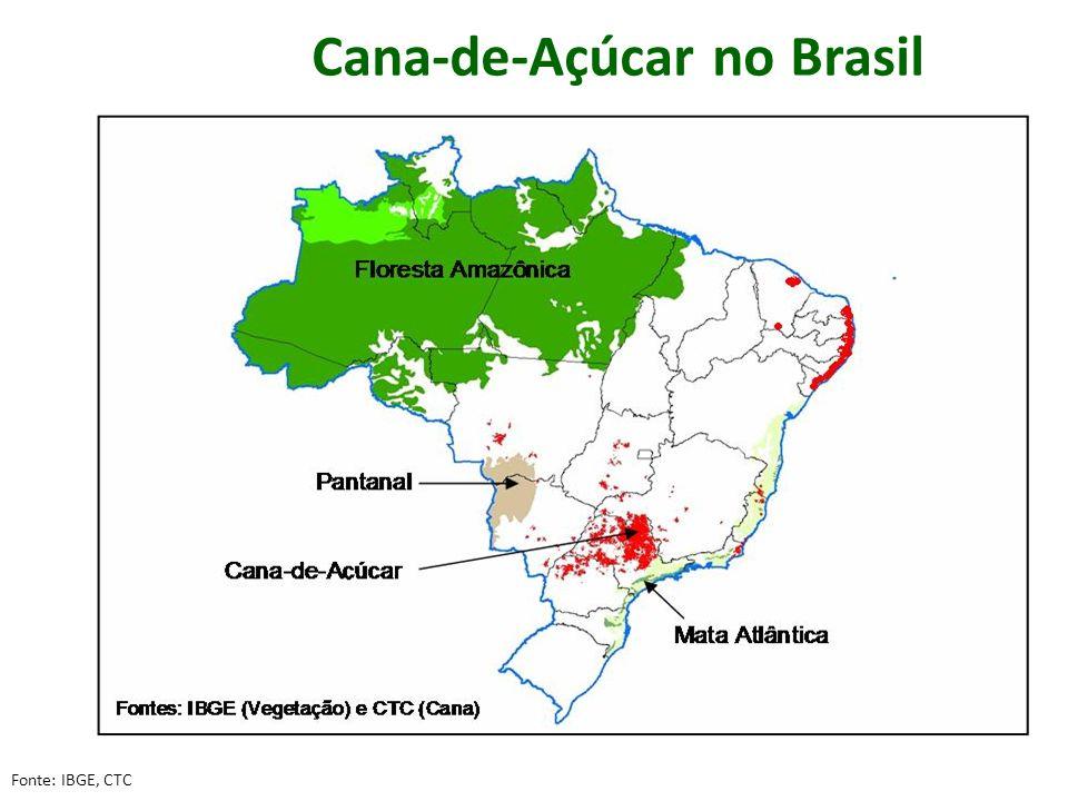 Cana-de-Açúcar no Brasil