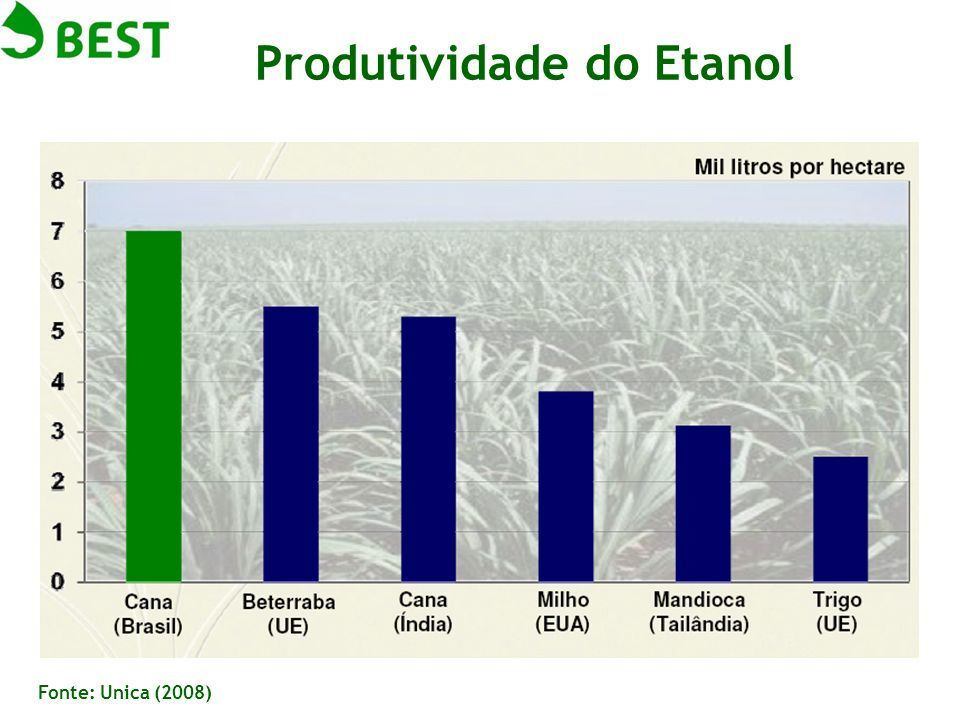 Produtividade do Etanol