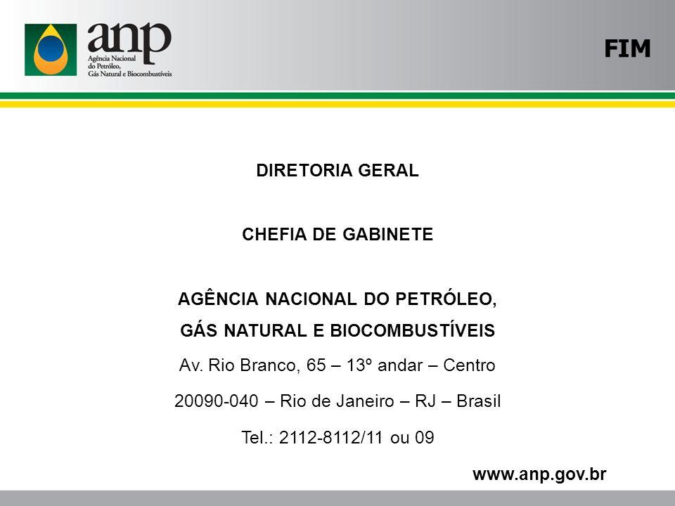GÁS NATURAL E BIOCOMBUSTÍVEIS