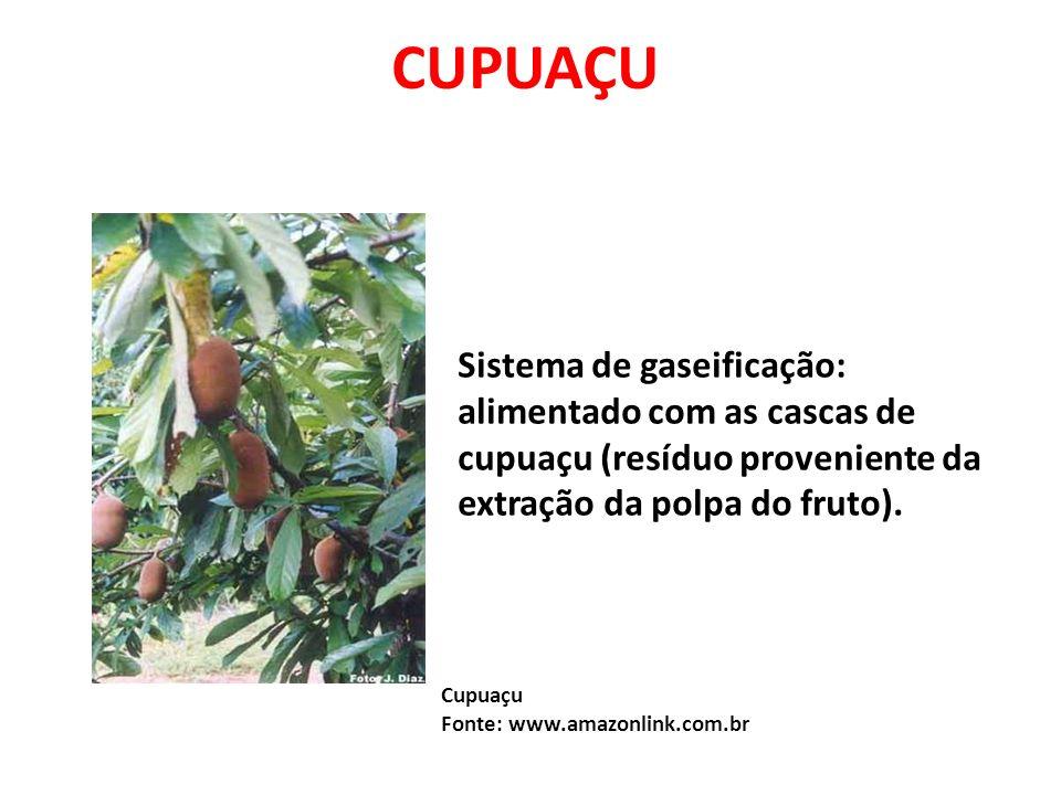 CUPUAÇUSistema de gaseificação: alimentado com as cascas de cupuaçu (resíduo proveniente da extração da polpa do fruto).