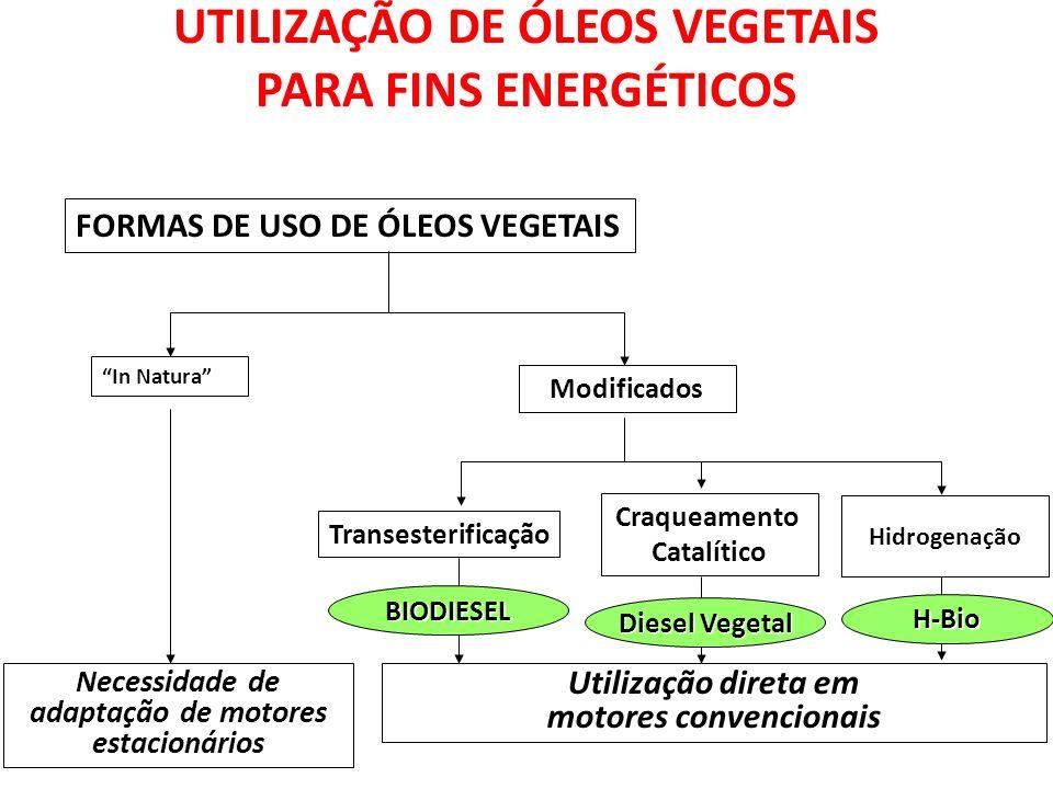 UTILIZAÇÃO DE ÓLEOS VEGETAIS PARA FINS ENERGÉTICOS