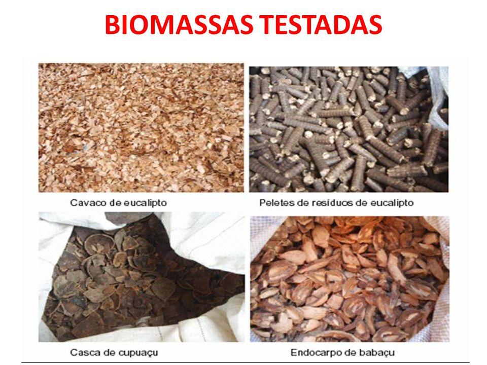 BIOMASSAS TESTADAS