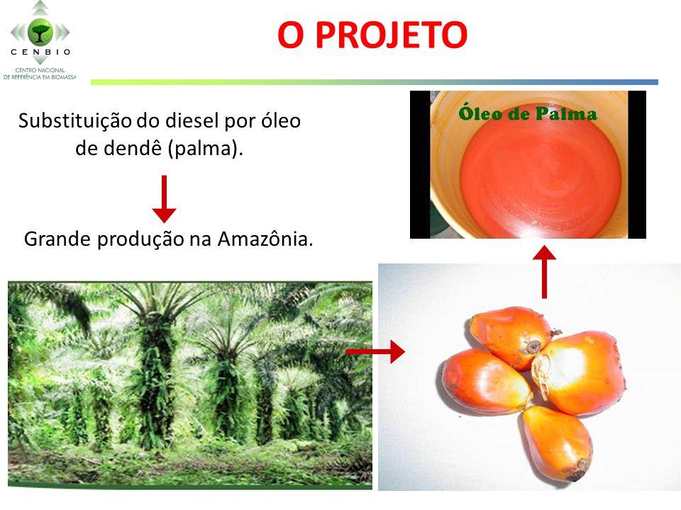 O PROJETO Substituição do diesel por óleo de dendê (palma).