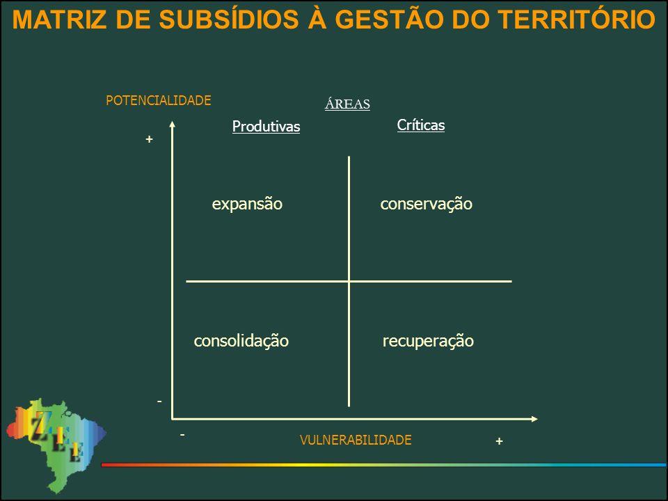 MATRIZ DE SUBSÍDIOS À GESTÃO DO TERRITÓRIO