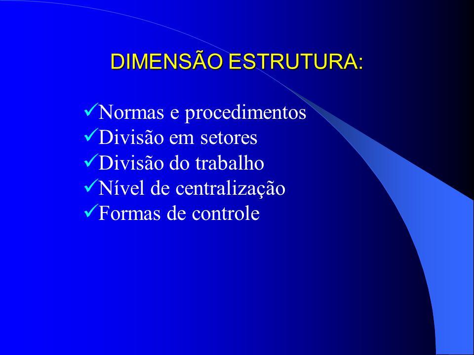 DIMENSÃO ESTRUTURA:Normas e procedimentos. Divisão em setores. Divisão do trabalho. Nível de centralização.