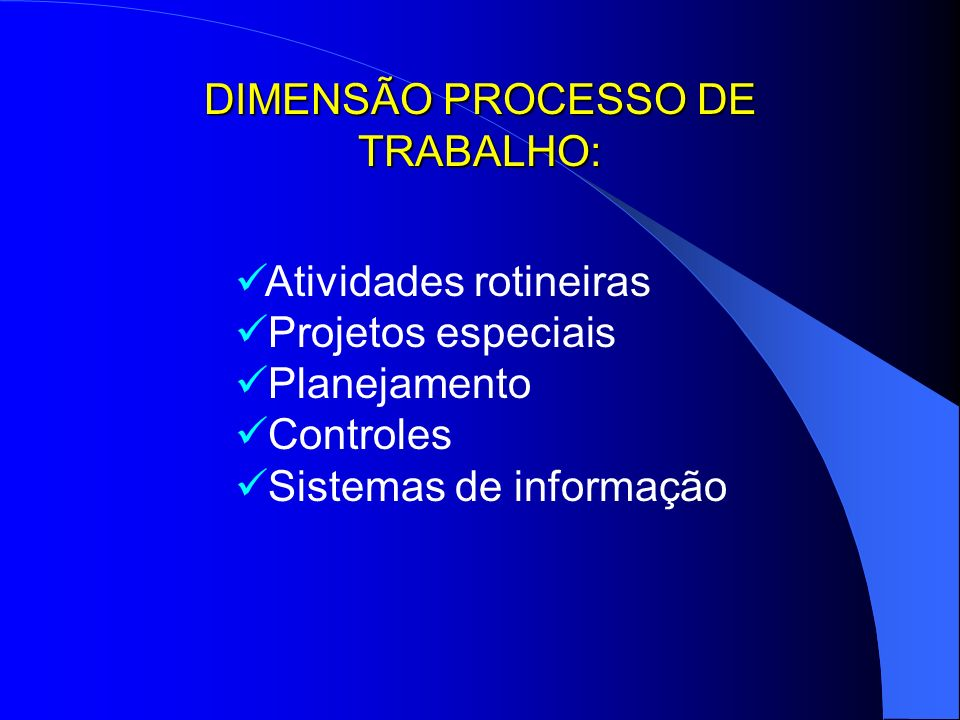 DIMENSÃO PROCESSO DE TRABALHO:
