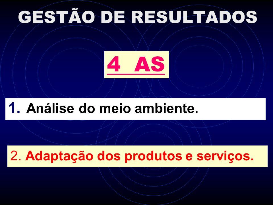 4 AS GESTÃO DE RESULTADOS Análise do meio ambiente.